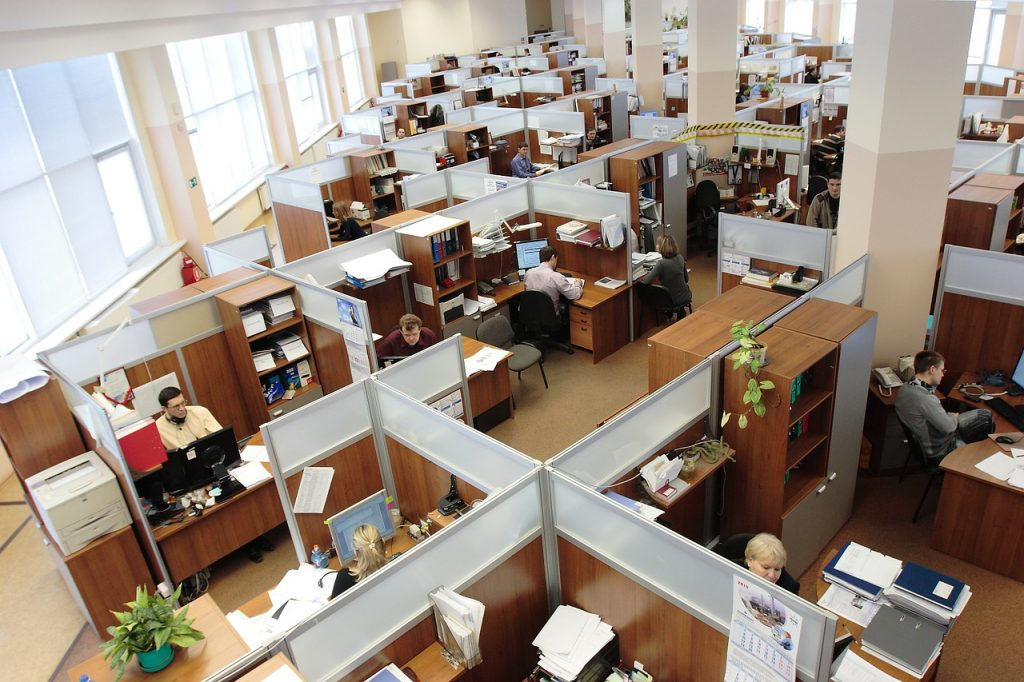 Top view of employees working in cubicles