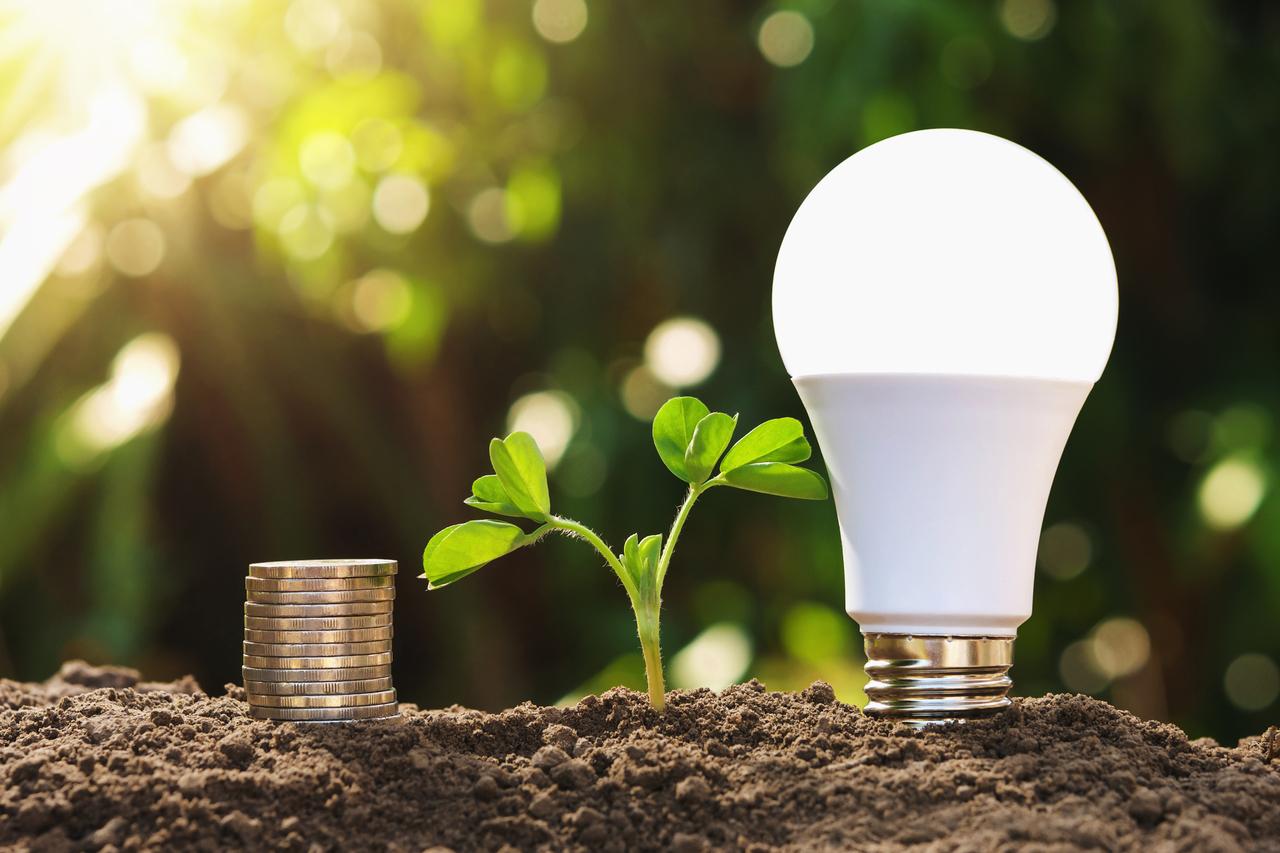 An energy efficient LED Light Bulb